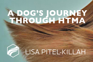 A DOG'S JOURNEY THROUGH HTMA